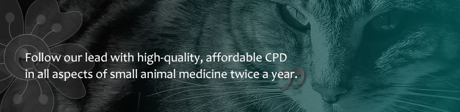 High-quality, affordable CPD in all aspects of small animal medicine
